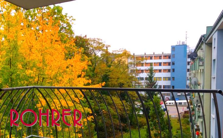 Aussicht Balkon Freie Wohnung bezugsfrei Rohrer Immobilien November 2015 Müllerstrasse Chausseestrasse